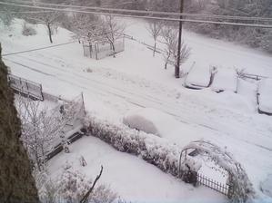 dnes ráno moje auto na ľavo pri plote ani nevidno