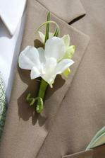 korsáž pro ženicha - kdyby vyhrály frézie :-)
