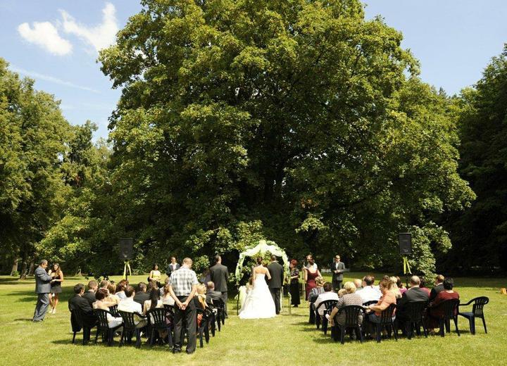 Srpnová svatba - Zámecký park, tady bude náš velký den, pod tímhle stromem si řejneme ANO