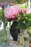 Srpnová svatba - Líbí se mi zelená s kapkou růžové