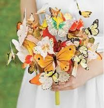 jedna motýlková
