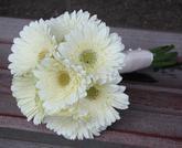 Srpnová svatba - Pro maminky bílé gerbery, obě mamči je měly jako svatební a mají je rády, tak budou :-)