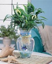 a výzdoba, ve vázách živé rybky :-)