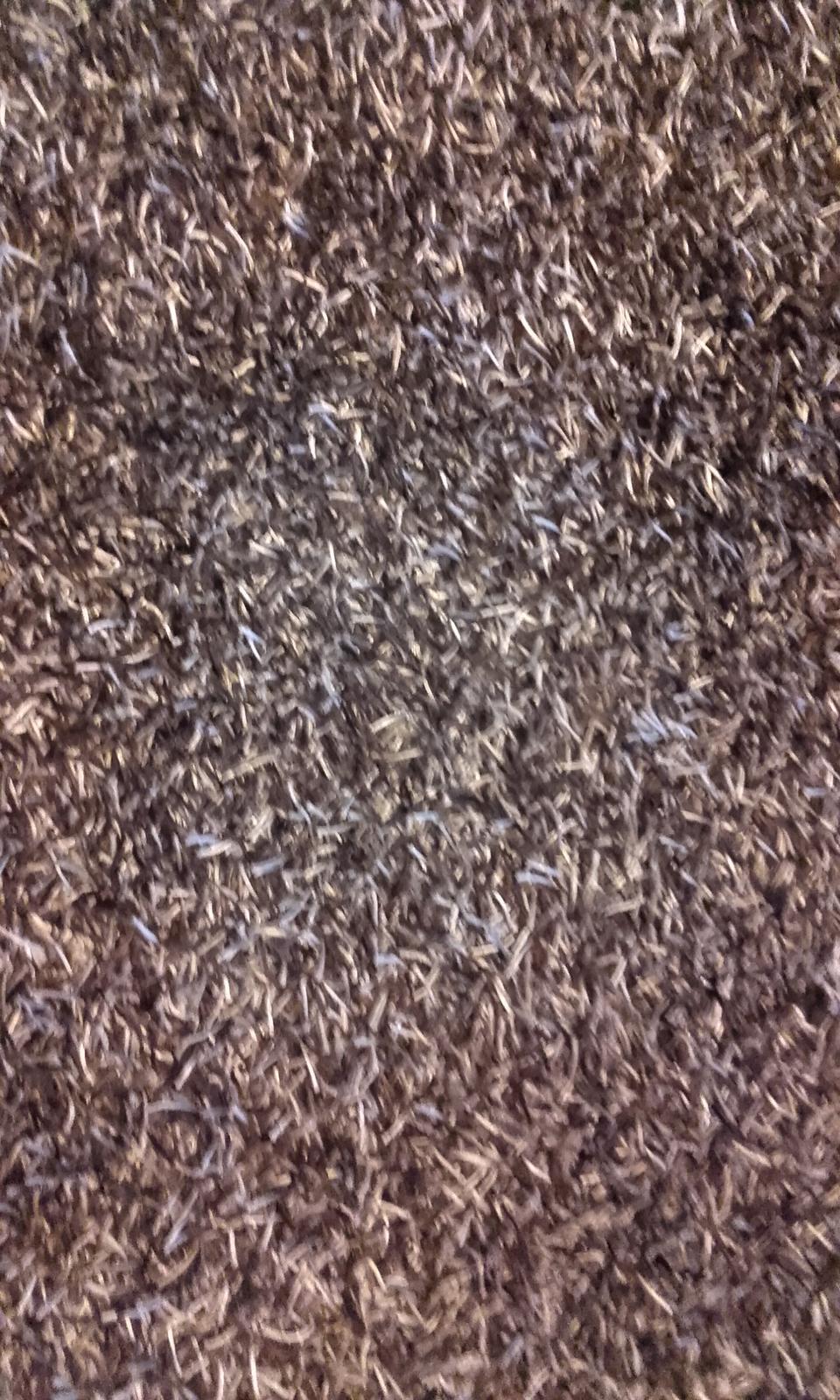 koberec - Obrázok č. 3