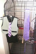 oblek pro prdolku a kravata pro ženicha nakonec bude bílá
