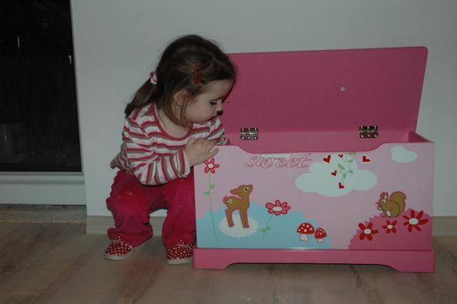 Náš dom :) - truhlička na hračky