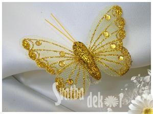 Motýlci na stůl