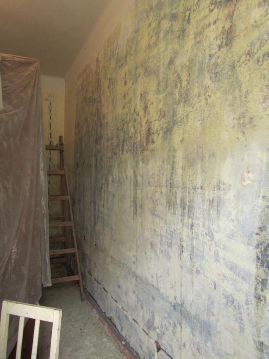 Ložnice+obývák - Škrábem jako diví. A strop asi půjde dolů. Blbý rákosí.