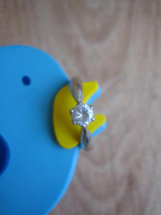 Nezbytné maličkosti :-) - Zásnubák přinesl pták :-)