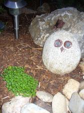 aj v skale je ružička, nevymrzlo to