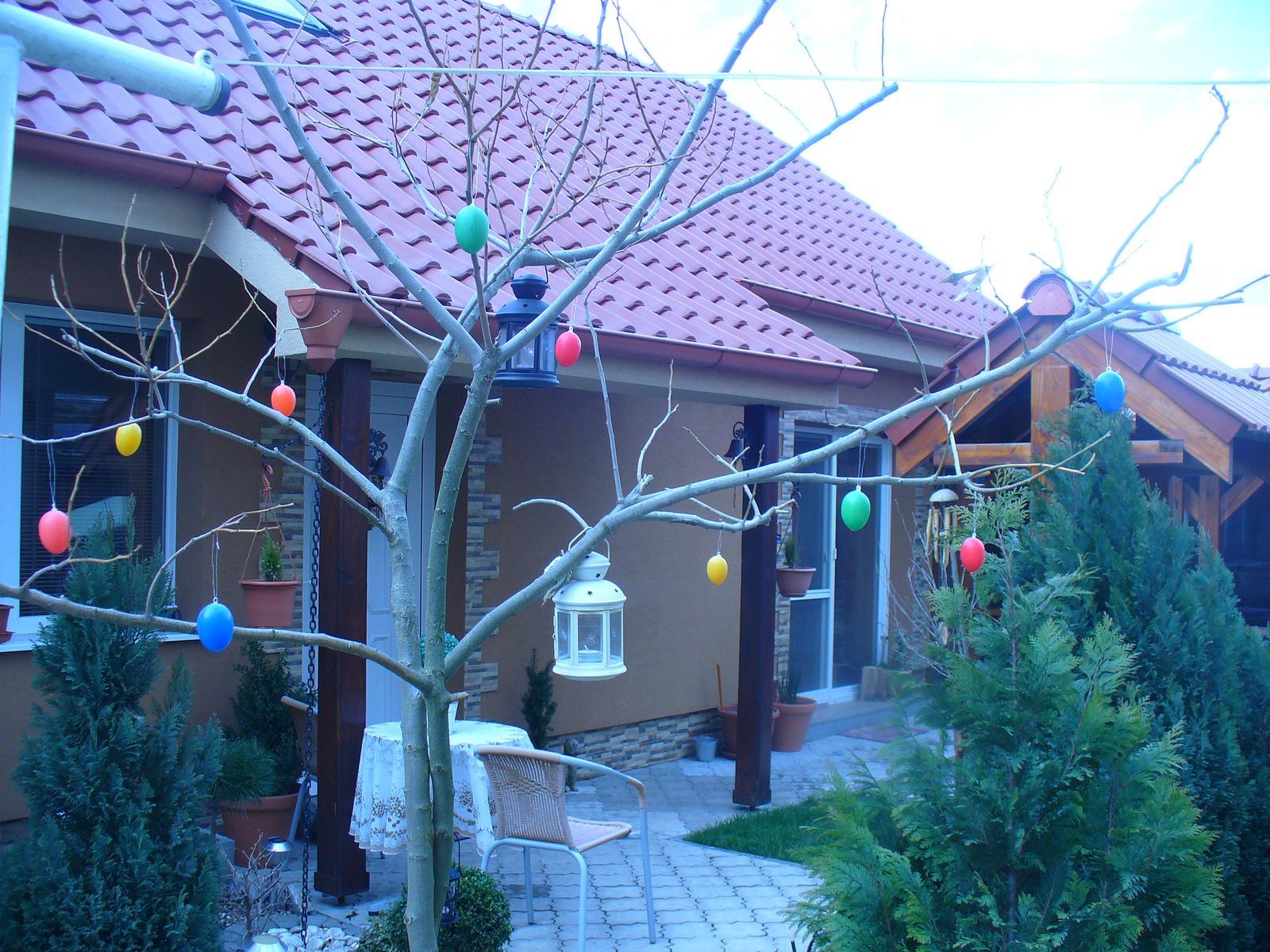 Krásne a veselé Veľkonočné sviatky Vám prajem :) - Albízia sa teší, že je taká Veľkonočná :)