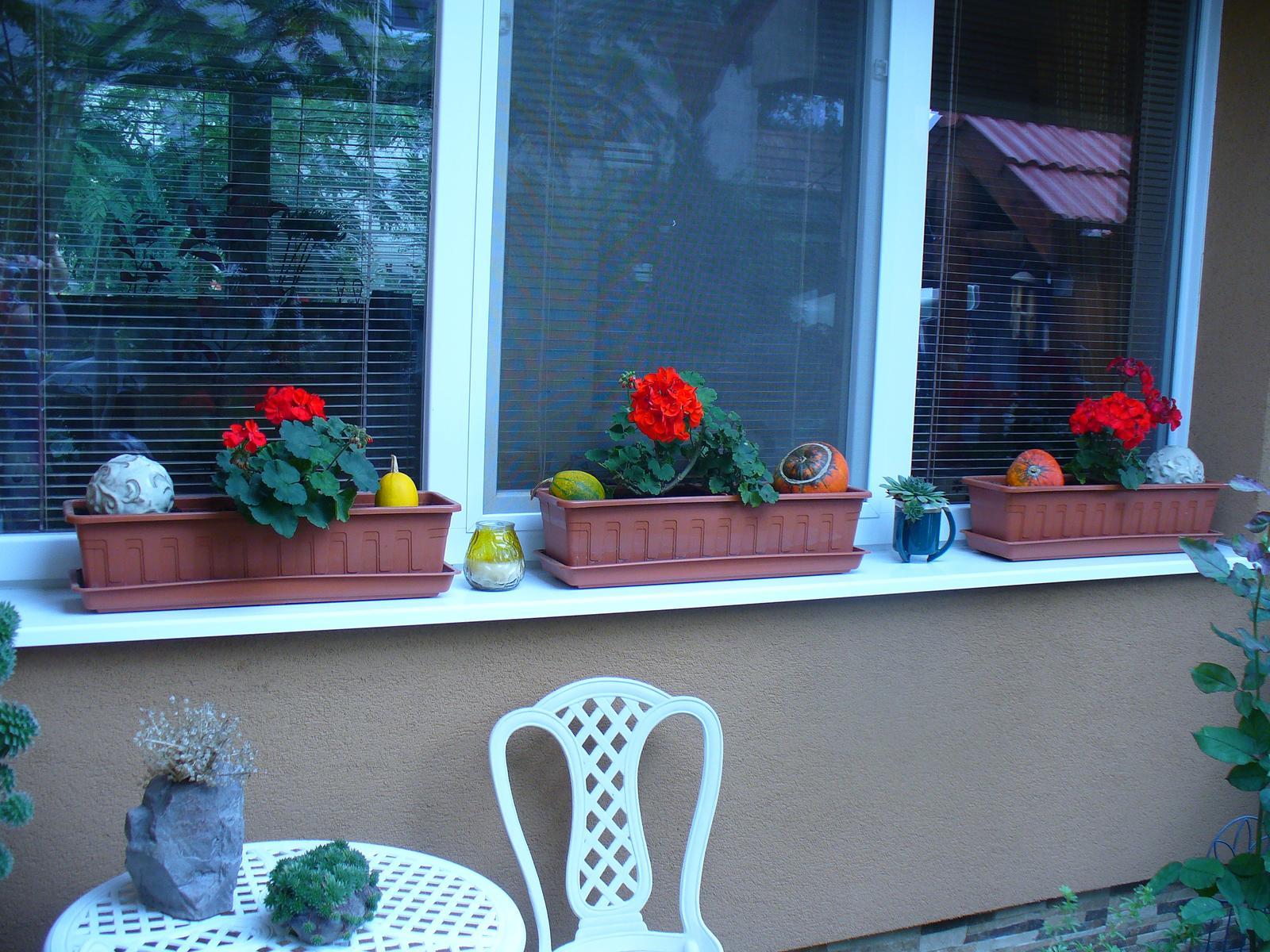 Naša záhradka v roku 2015. - aj muškáty stále kvitnú