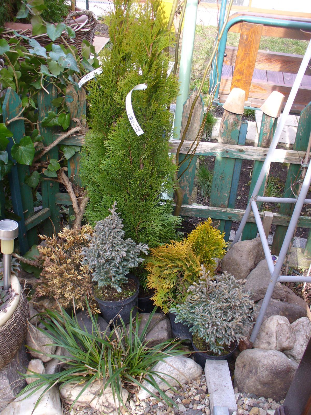 Prerábka, sadenie a úpravy v našej mini záhradke. - už to len prikladám, kde čo sa bude sadiť