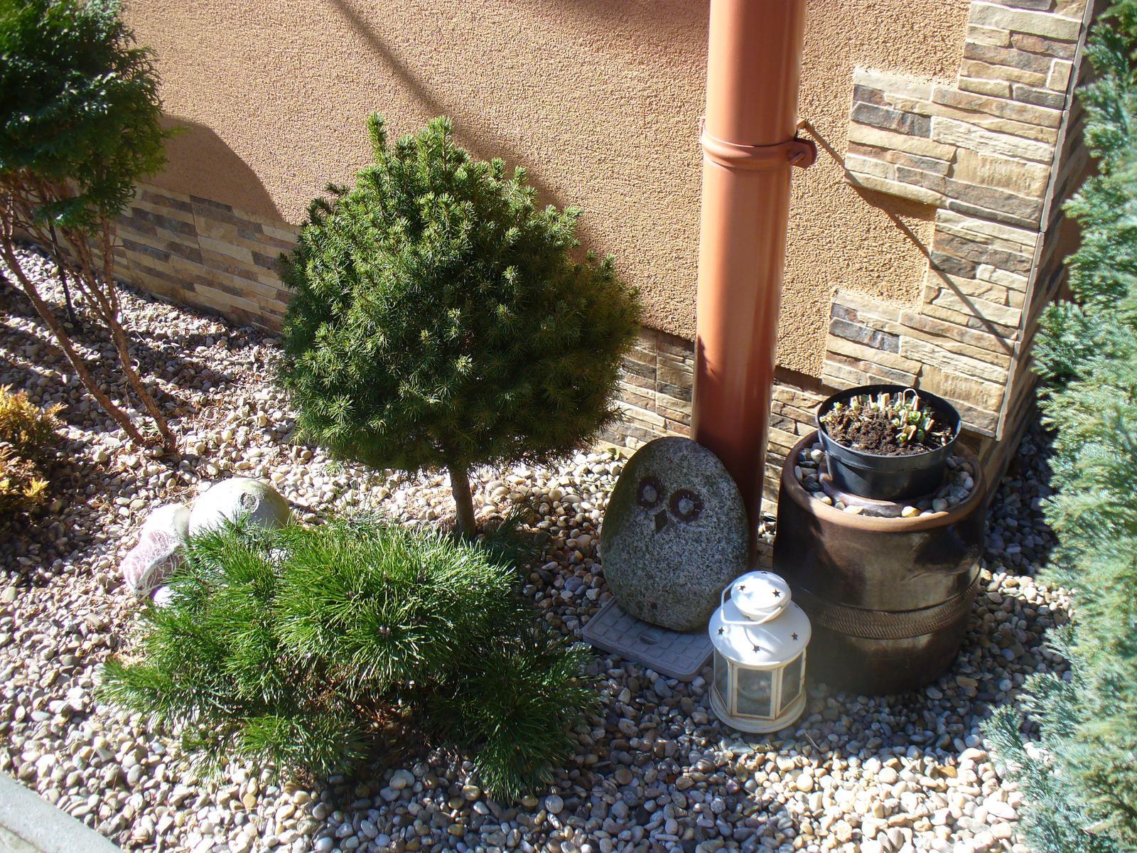 Prerábka, sadenie a úpravy v našej mini záhradke. - túto sovičku mám už dlho, robil môj syn