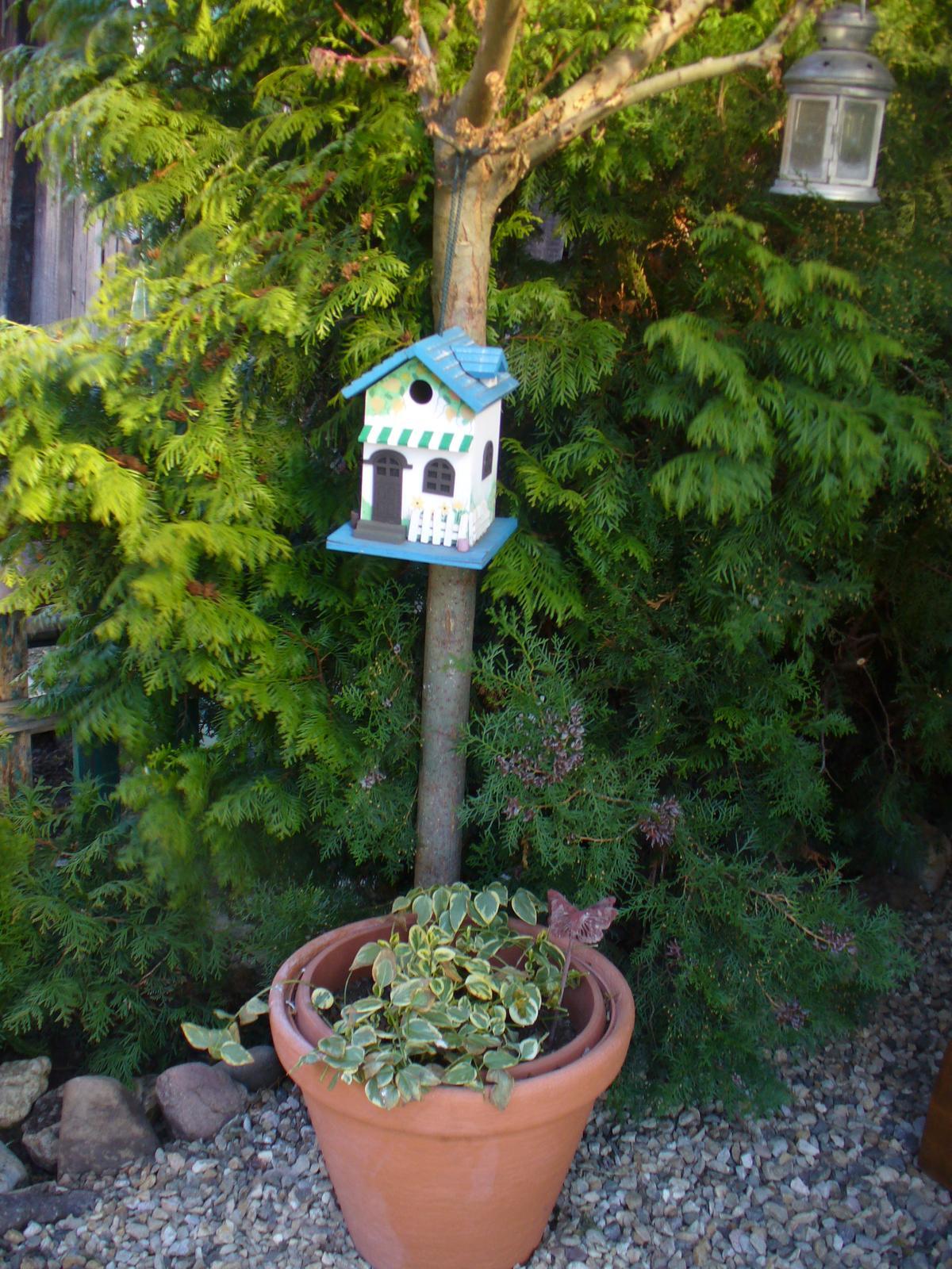 Prerábka, sadenie a úpravy v našej mini záhradke. - stará vrba slúži ako vešiak