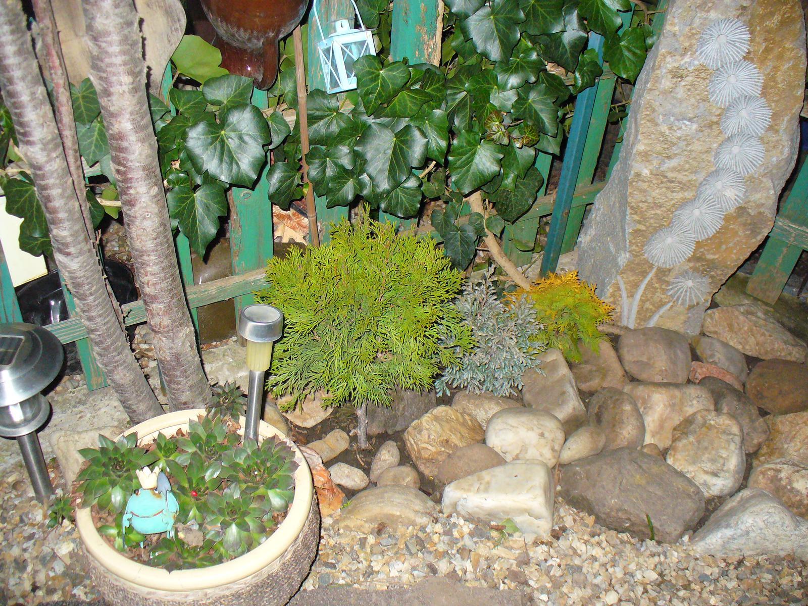 Prerábka, sadenie a úpravy v našej mini záhradke. - aj tu sme niečo vysadili