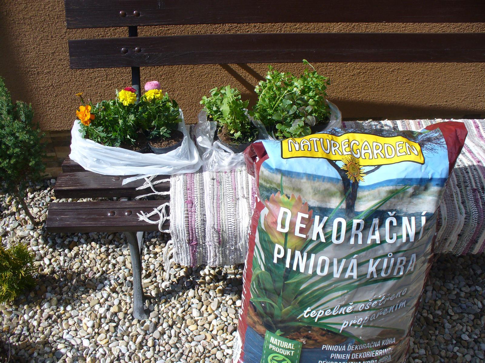 Prerábka, sadenie a úpravy v našej mini záhradke. - nákup