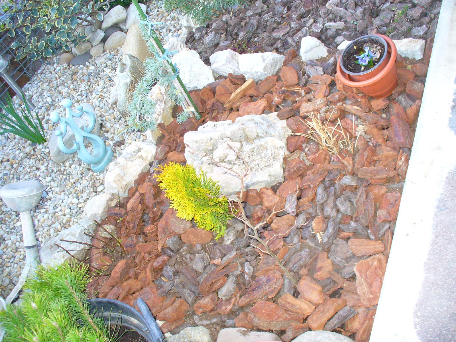 Prerábka, sadenie a úpravy v našej mini záhradke. - vpredu zasadená Buk lesný