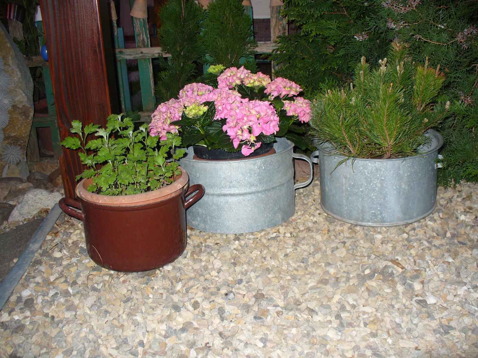 Prerábka, sadenie a úpravy v našej mini záhradke. - Staré hrnce využité