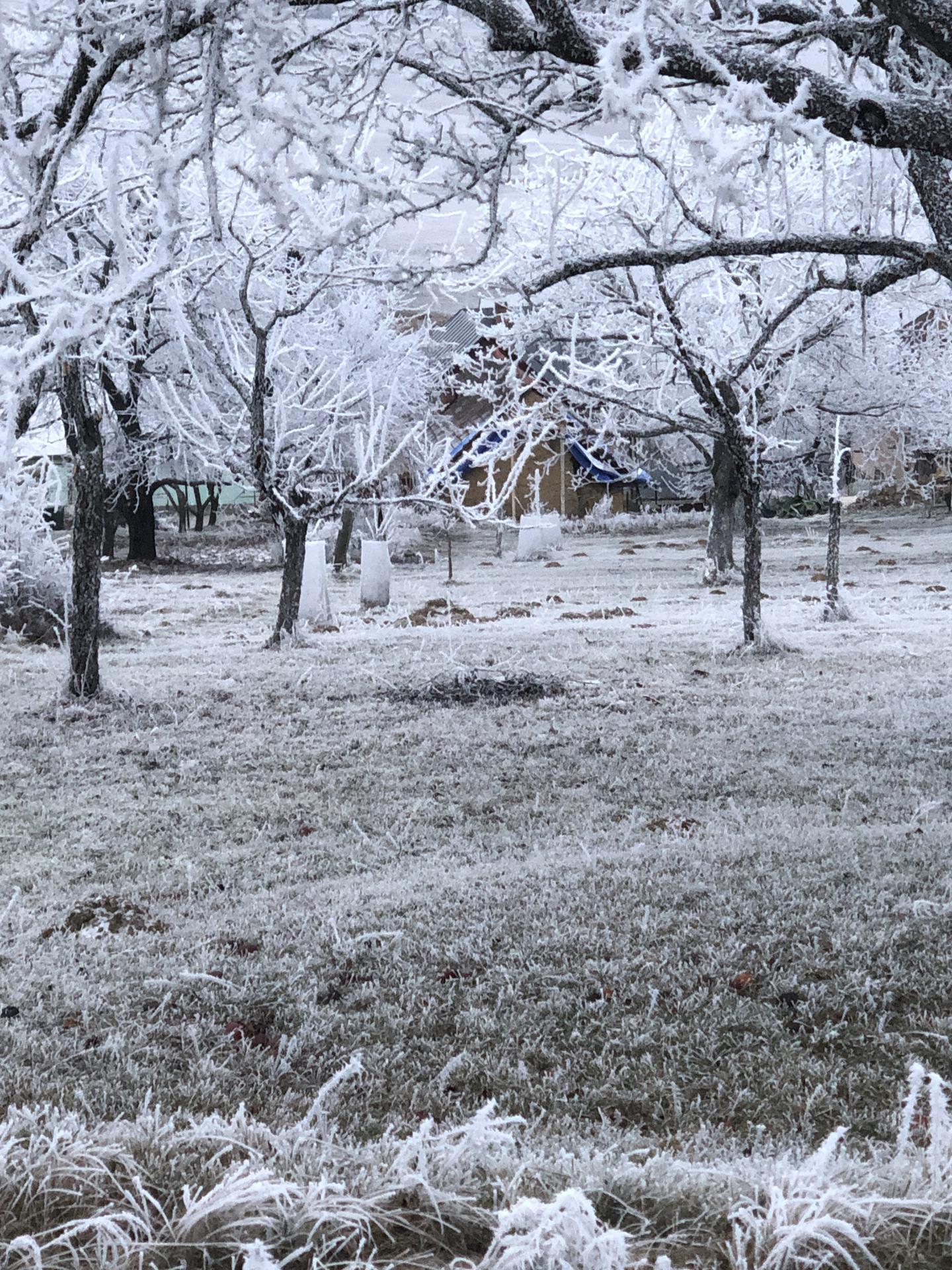 rekonštrukcia na 110% - zima na našej obrovskej záhrade