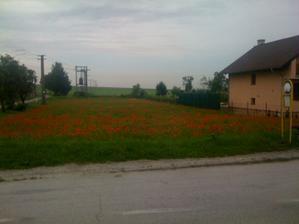 Takto vyzeral náš krásny pozemok hned po kúpe :) až neuveritelné