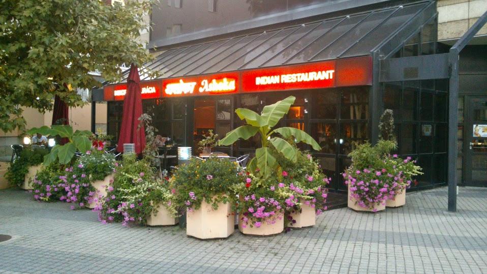 rastlinky_sk - Výsadba betónových kvetináčov pred Indickou reštauráciou umiestnenou v hoteli Crowne Plaza v Bratislave