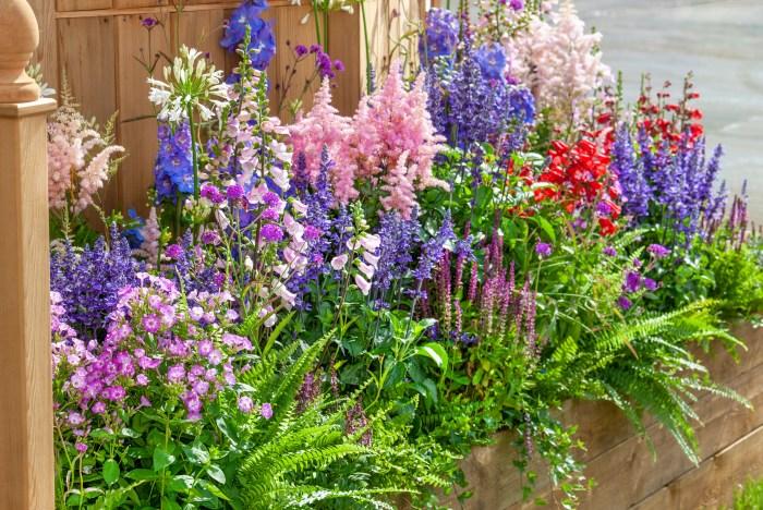 Inšpirujúce trvalkové záhony a iné výsadby - paprade, agapant, digitalis, salvia, astilbe, verbena, delphinium, hedera,