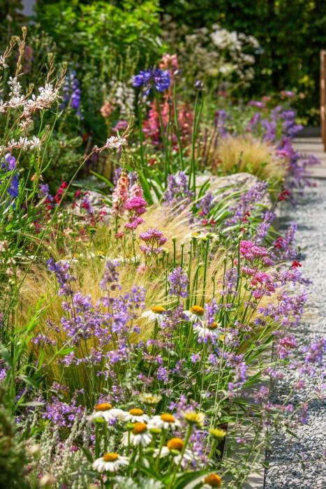 Inšpirujúce trvalkové záhony a iné výsadby - leucanthemum, gaura, okrasné trávy, verbena, achillea, agapant