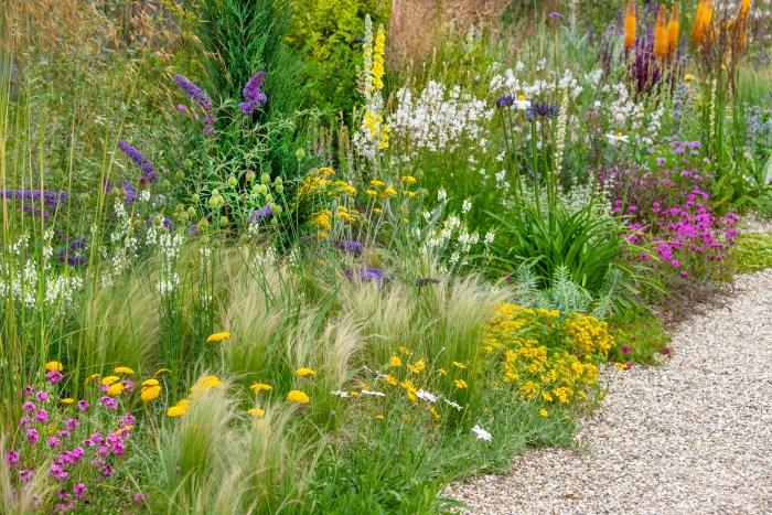 Inšpirujúce trvalkové záhony a iné výsadby - achillea, verbena, stipa, leucanthemum, agapanthus, eremurus, euphorbia, sedum, buddleja, allium, gaura