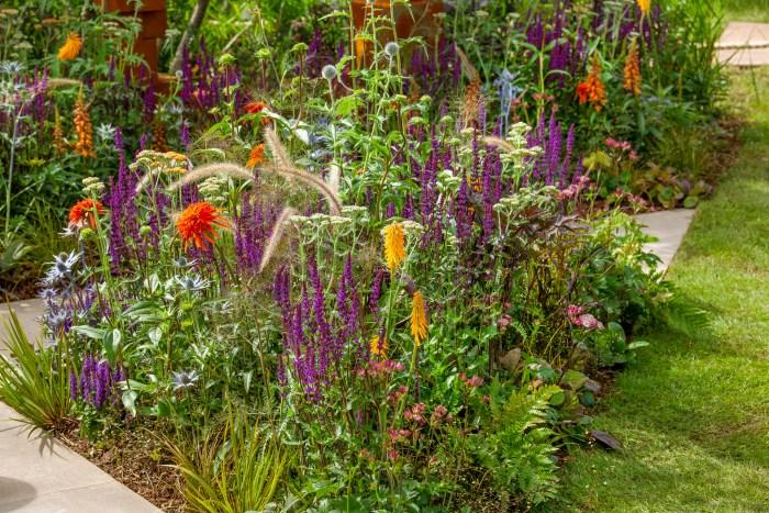 Inšpirujúce trvalkové záhony a iné výsadby - salvia, echinacea, pennisetum, achillea, kniphofia, echinops,
