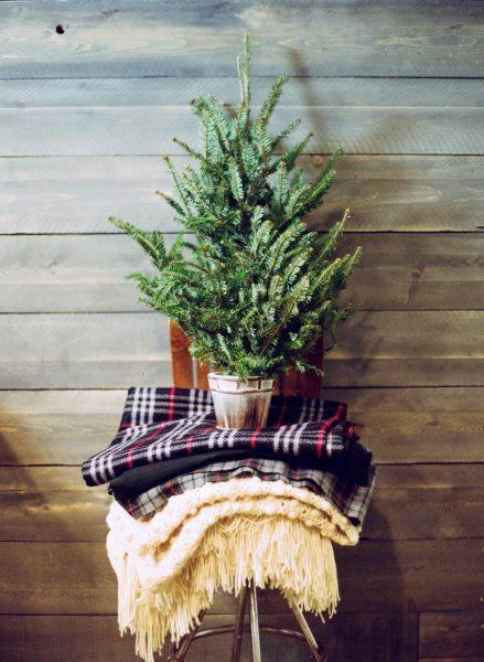 ******christmas tree****** - Obrázok č. 32