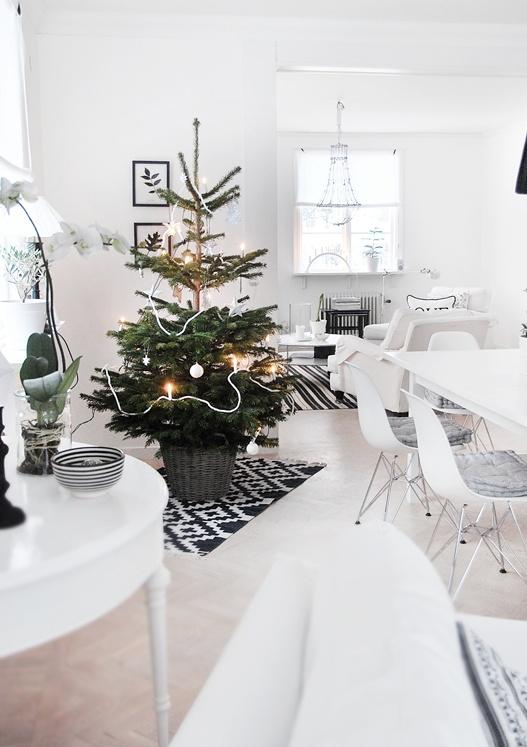 White,black, red christmas..... - Obrázok č. 31