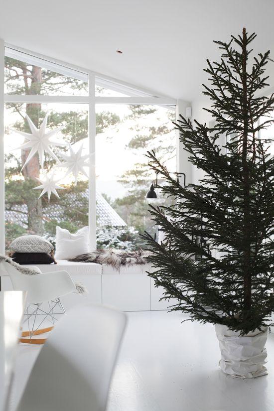 ******christmas tree****** - Obrázok č. 10
