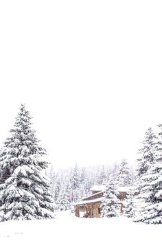 White,black, red christmas..... - Obrázok č. 68