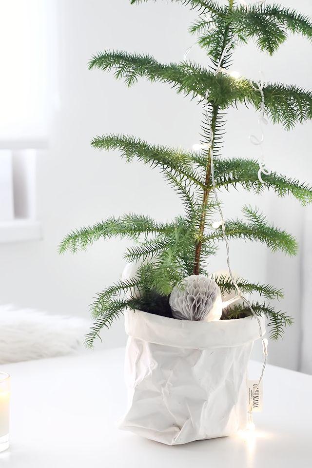 ******christmas tree****** - Obrázok č. 39