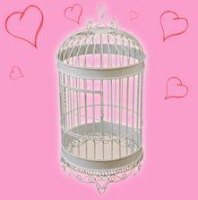 klietka pre holúbkov