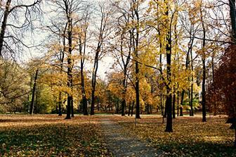 Léta Páně - okolní park