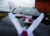 Svatební dekorace,výzdoba na auto - spoutané srdce,