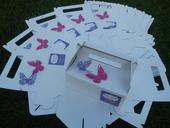 Krabička na zákusky, výslužku - se jmény a motýli,