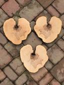 Dřevěné kulatiny srdce,