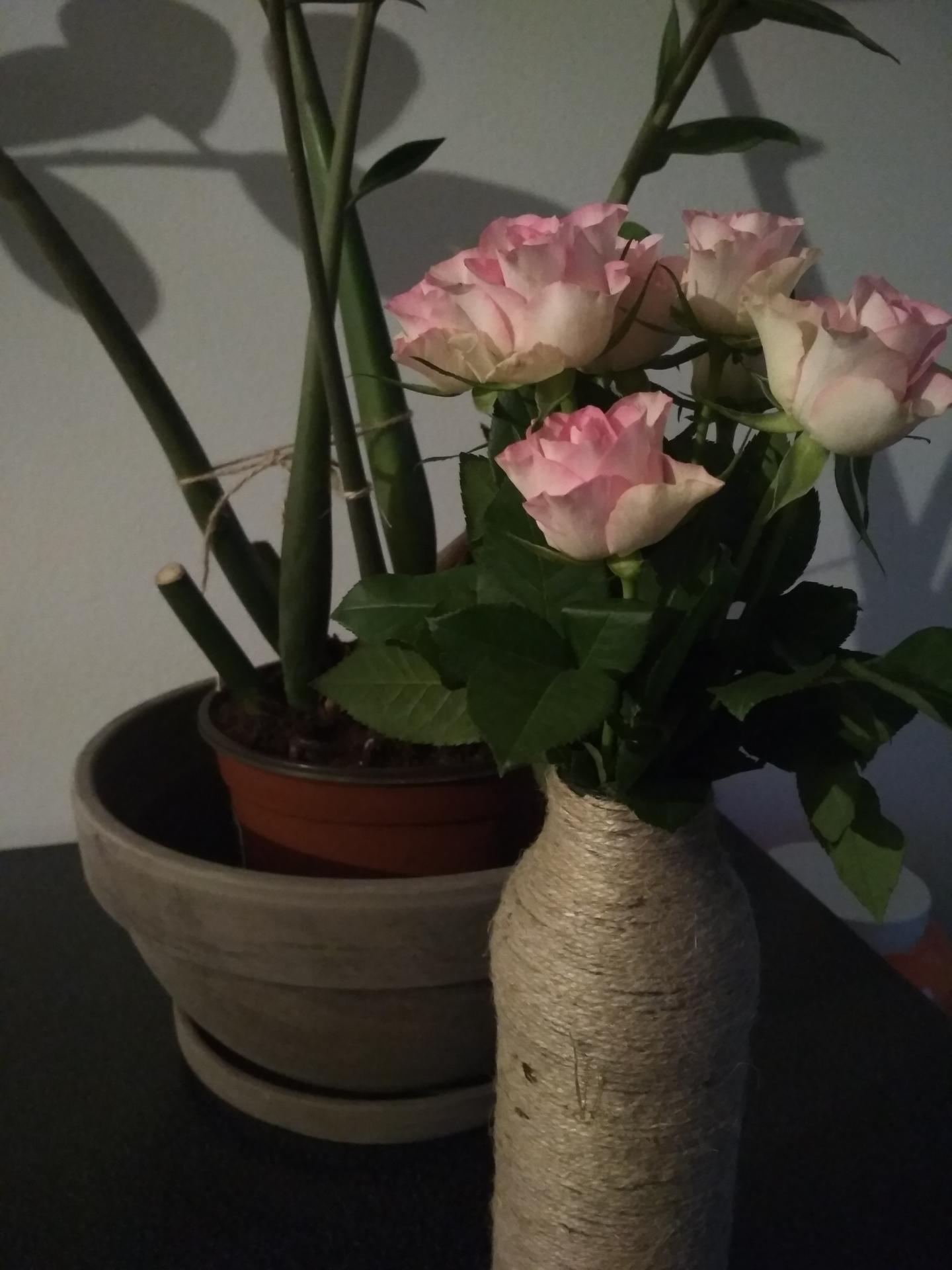 Přípravy v plném proudu :-) - Vyrobenou vázičku už jsem měla i doma s kytičkou..