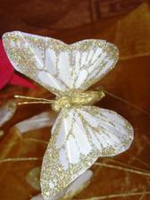 Zlatý motýlek- ještě nevím jestli ho použiju