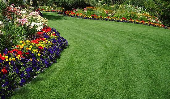 Moje inšpirácie (malé) na dvor - veľa zelene, ndherné
