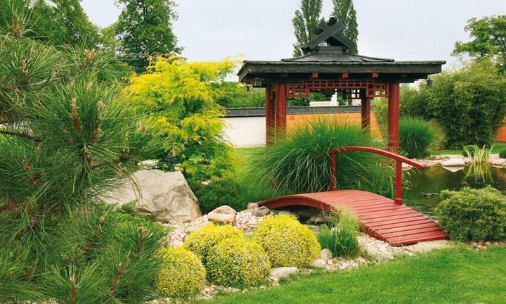 Zahrada-můj sen a inspirace - Obrázek č. 3