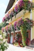 Barevné kombinace pro slunný balkon.