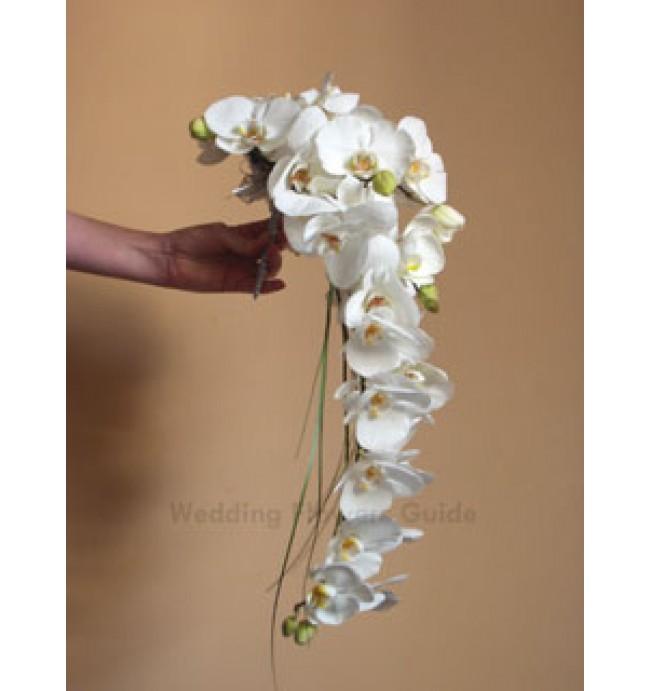 Ako si to predstavujem - Orchidea...  úžasné ... a pár takychto aj do vlasov