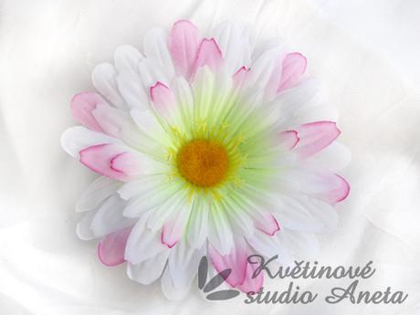Květ gerbera růžová - Obrázek č. 1