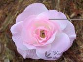 Květ růže růžový malý,