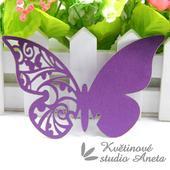 Jmenovka motýlek fialový s perletí,
