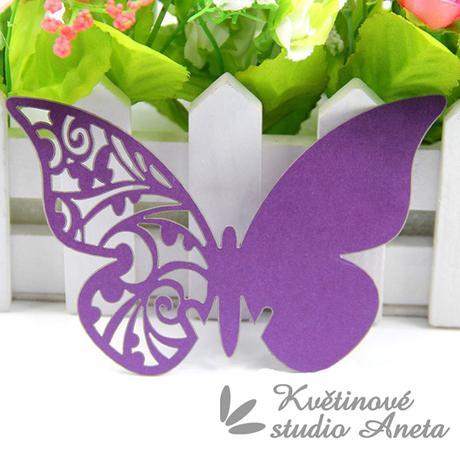 Jmenovka motýlek fialový s perletí - Obrázek č. 1
